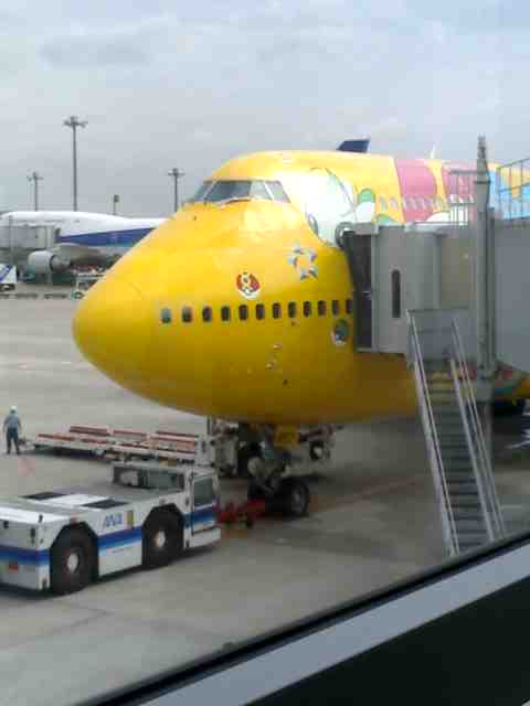 本日の搭乗機